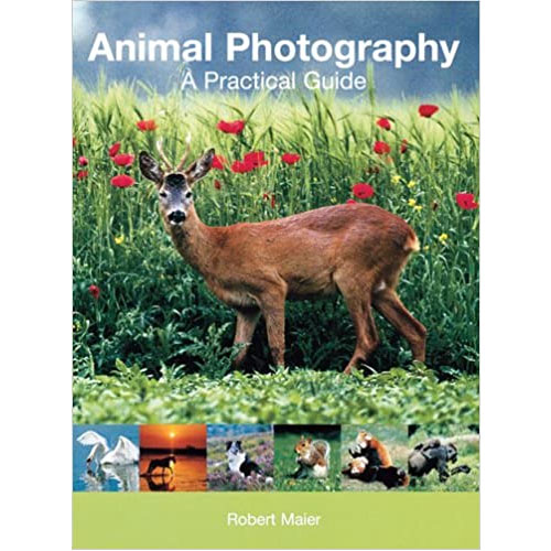 Animal Photography A Practical Guide