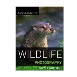 success with wildlife photography