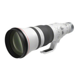Canon RF 600mm L IS USM